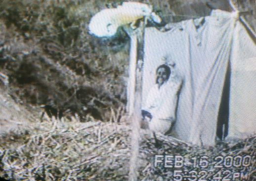 "Images of the Escudero family home videos, days after the ""invasión"""